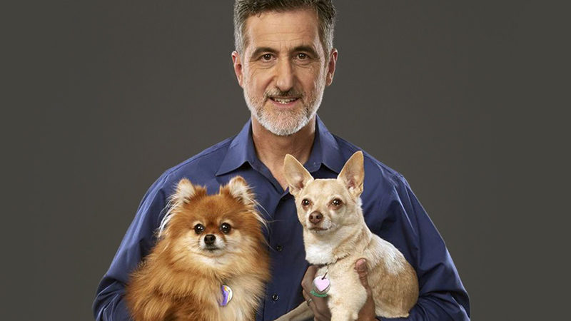 Bill Berloni and dogs