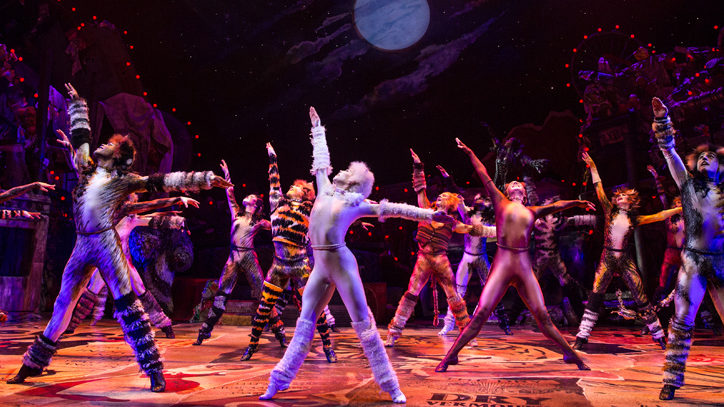 <em>Cats</em> to Live-On in National Tour