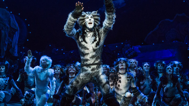 The cast of Cats the musical on Broadway