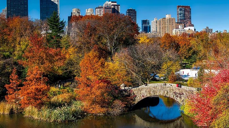 Top 5 Things to do in NYC This Fall