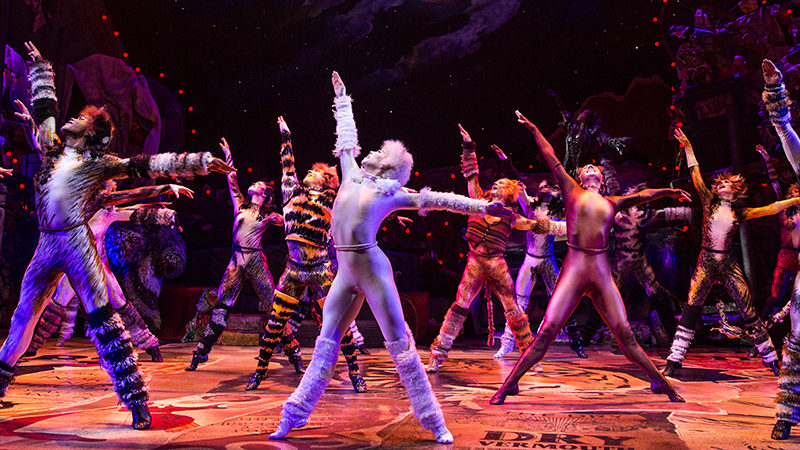 Cats to perform at the Hollywood Pantages