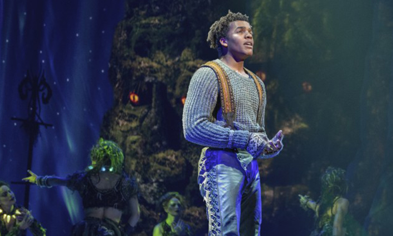 Mason Reeves in the national tour of <i>Frozen</i>. Photo by Deen van Meer.