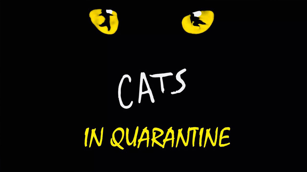 Cats in Quarantine